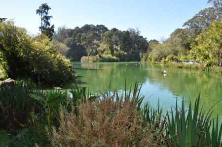 Stow Lake in San Francisco's Golden Gate Park